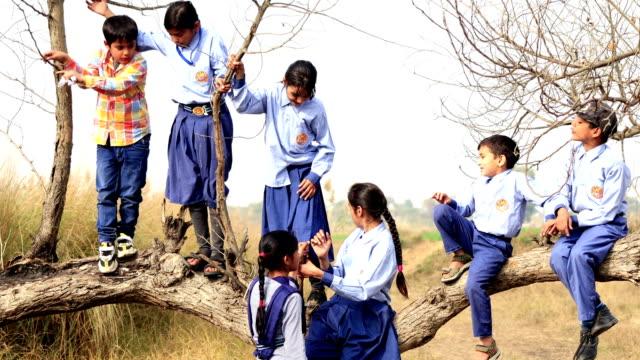Kind spelen in de buurt van gevallen boom buiten in de natuur video