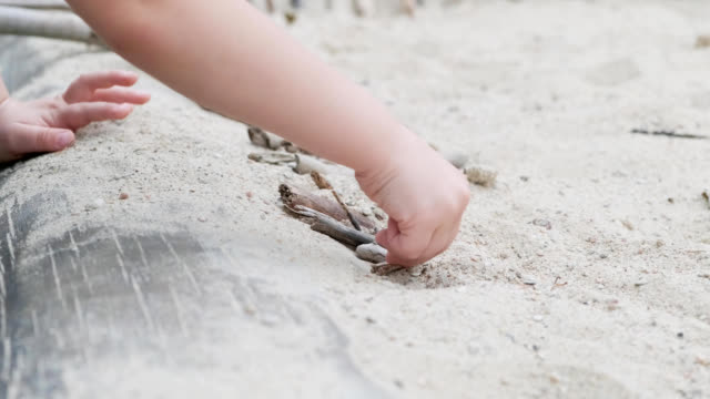 child playing on sand in forest with twigs child playing on sand in forest with twigs on a sunny day stick plant part stock videos & royalty-free footage