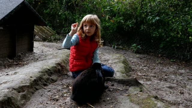 bambino che gioca con i conigli - bestiame video stock e b–roll
