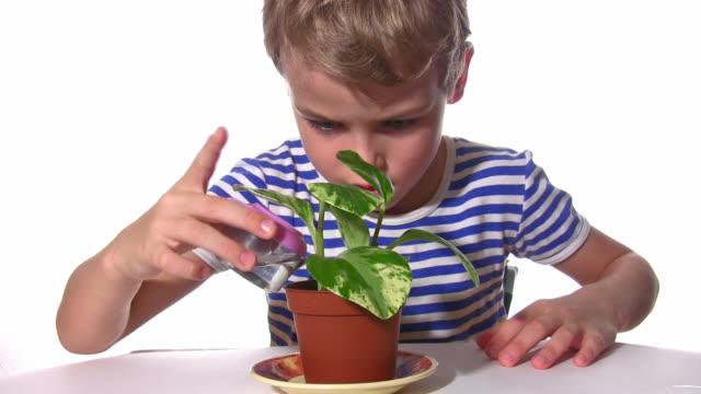 Child pour plant video