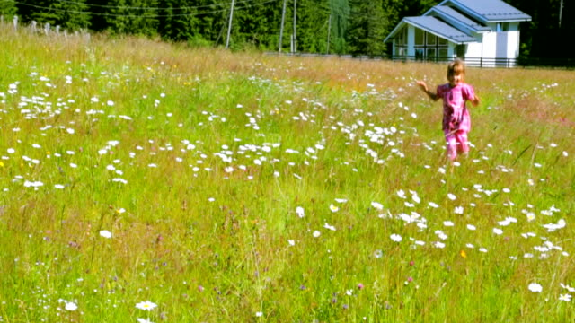 Child running through camomile field in summer morning video