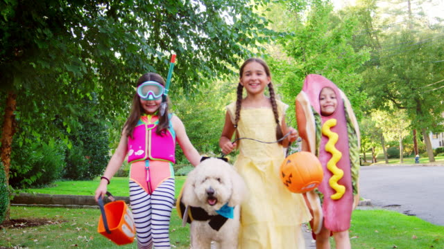 children and dog in halloween costumes for trick or treating - halloween video stock e b–roll