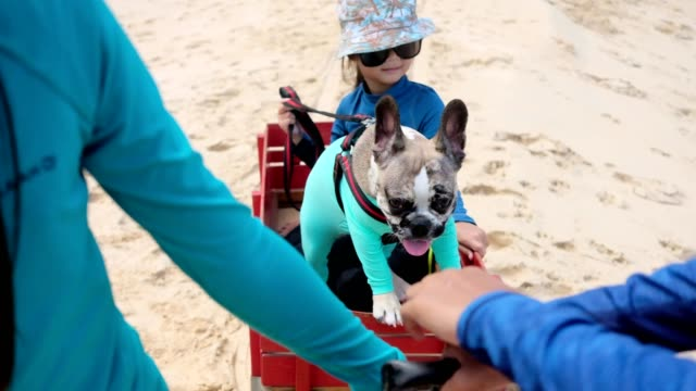 Children are fun and happy with retro pull trolley with dog on the beach