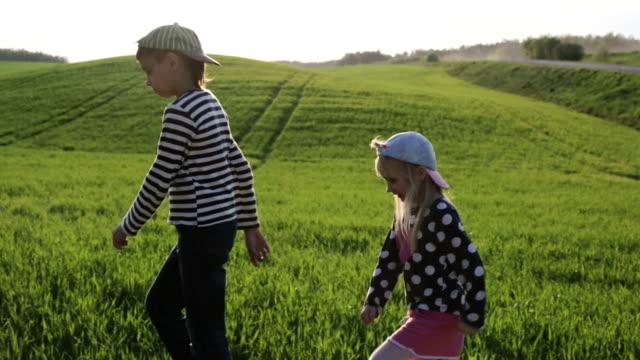 子供たちは、緑の草原で歩いています。 ビデオ