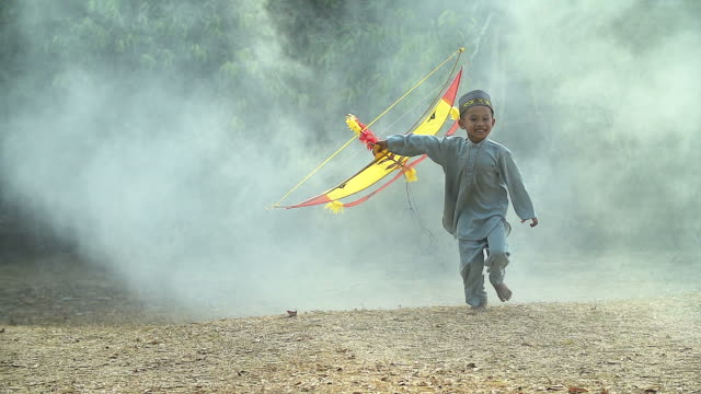Children Boy Playing with his Kite Enjoyment Concept. video