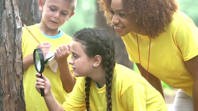 children exploring nature, summer camp or science class - viaggio d'istruzione video stock e b–roll