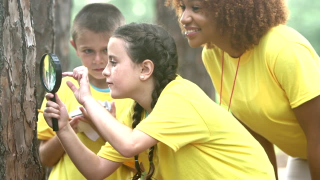 Children exploring nature, summer camp or science class Children exploring nature at summer camp or on a school field trip. A mixed race Hispanic and Caucasian girl is examining a tree trunk with a magnifying glass while a boy takes notes, and a teacher watches. magnifying glass stock videos & royalty-free footage