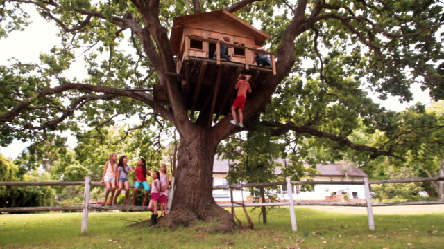 Children in a treehouse with boy climbing up rope ladder Two children playing in a rustic wooden treehouse situated in the branches of a huge green-leafed tree in a lush grassy park, with a boy climbing up the rope ladder and girls sitting underneath fort stock videos & royalty-free footage