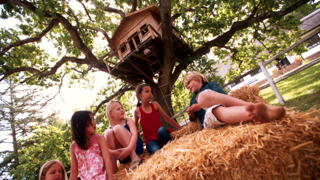 Children lying on hay bales under a wooden treehouse video