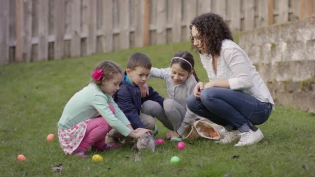 Children petting a bunny video