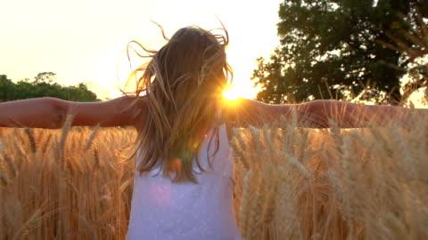 vidéos et rushes de hd super ralenti: enfants courir en blé - insouciance