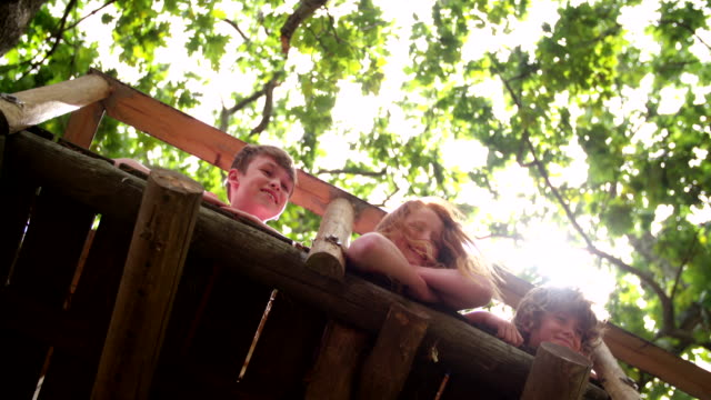 Children smiling over edge of treehouse with leaves above them row of children smiling while lying down in a treehouse and looking over the edge with the lush green leaves of the crown of the tree visible above them with soft sun flare filtering though fort stock videos & royalty-free footage