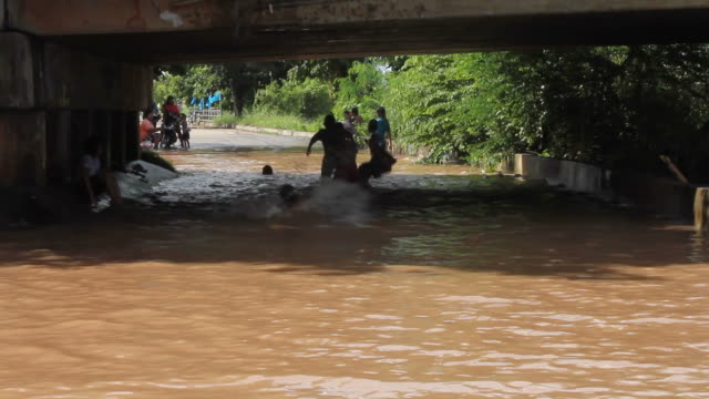 Children to swim. video