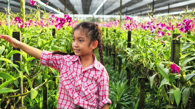 Children with orchid flower with beautiful spring.
