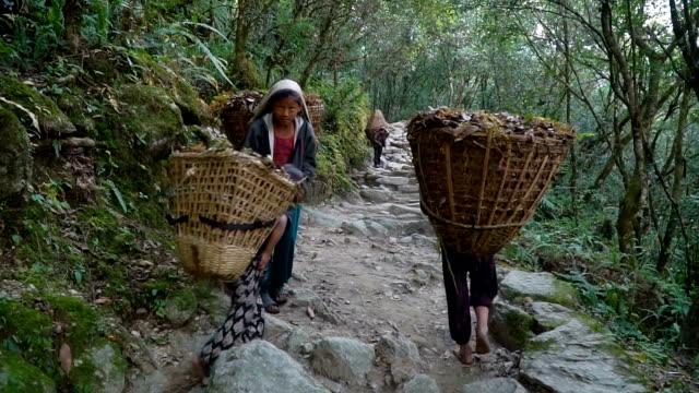 ネパールでポーターとして働く子供たち - ネパール人点の映像素材/bロール