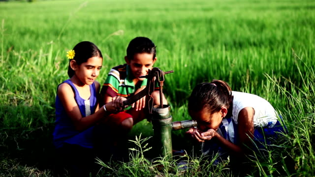 Children's drinking fresh water in the nature - video