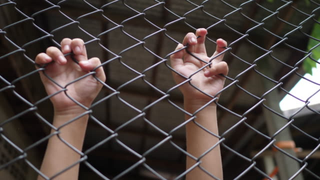 Children's hands on the iron fence. - video