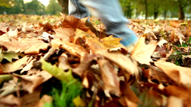 piedi del bambino cammina attraverso le foglie di autunno caduto - city walking background video stock e b–roll
