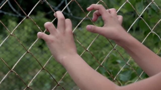 child's hands shaking the grid - summer background стоковые видео и кадры b-roll