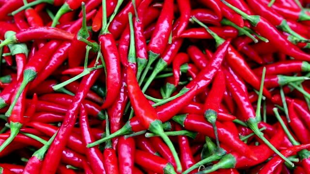 vídeos y material grabado en eventos de stock de guindilla la cocina tailandesa, tailandia - cayena guindilla roja