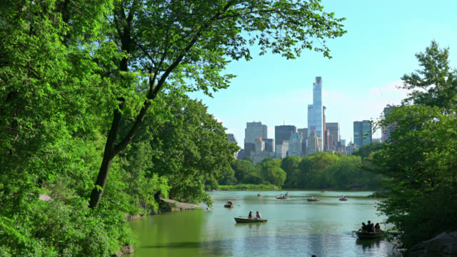 Chill in the Central Park Chill in the Central Park central park manhattan stock videos & royalty-free footage