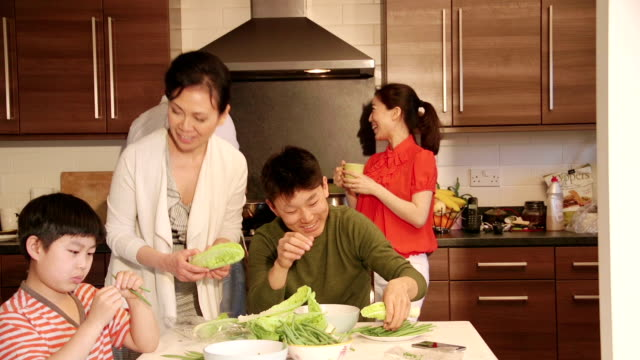 Chinese famille vu plaisir préparer à manger! - Vidéo