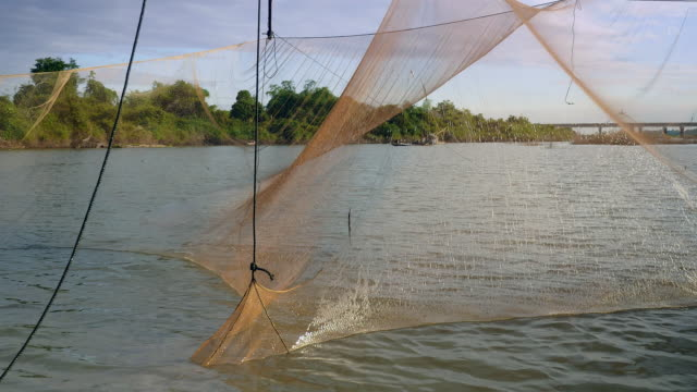 Chinese fishing net being lifted out of water to catch fish ( close up )