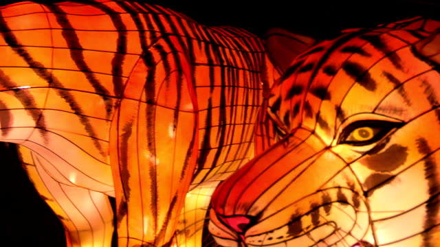 Chinese Lantern Of Two Tigers video