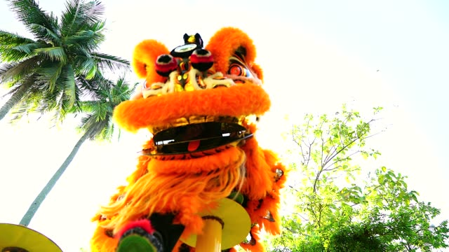 stockvideo's en b-roll-footage met chinese lion dance in een chinese new year's viering. - maleisië