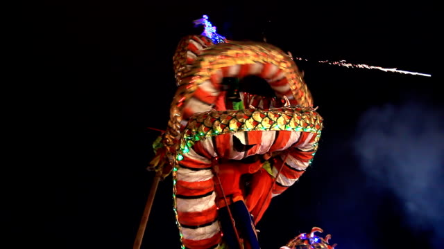 Chinese New Year Dragon. video