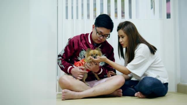 chiński nowy rok pary ze zwierzęciem - chinese new year filmów i materiałów b-roll