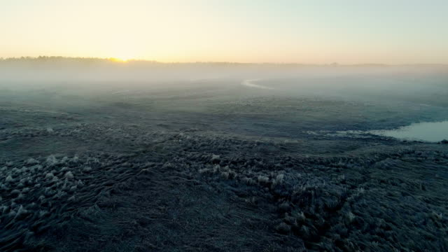 Chippewa National Forest, Minnesota, in the early cold morning in spring, with fog and haze. Aerial drone video with the backward camera motion.