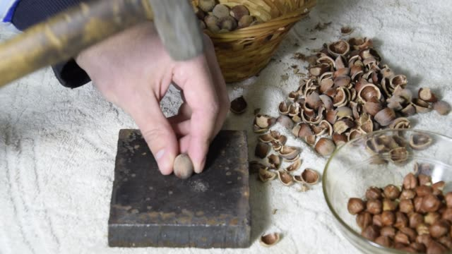 Chipping the hazelnuts with a hammer on the table video