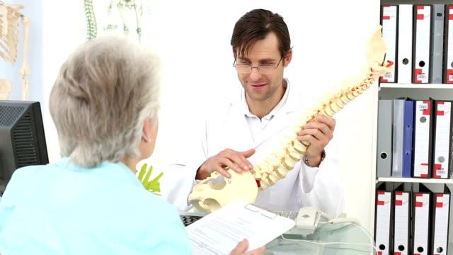 Quiroprático Mostrar coluna modelo de seu paciente - vídeo