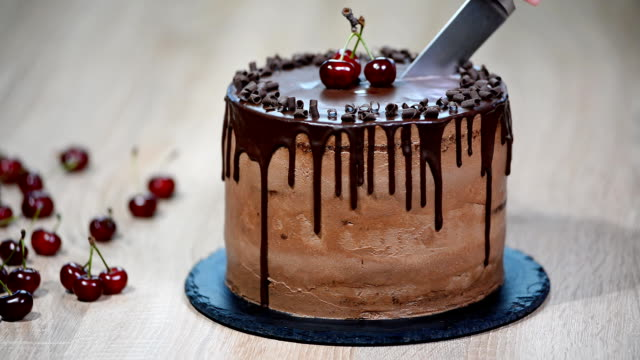 Best Cake Server Stock Videos and Royalty-Free Footage - iStock
