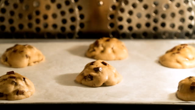 TL chocolate chip cookie baked in oven Time lapse video of chocolate chip cookies baked in oven, front view cookie stock videos & royalty-free footage