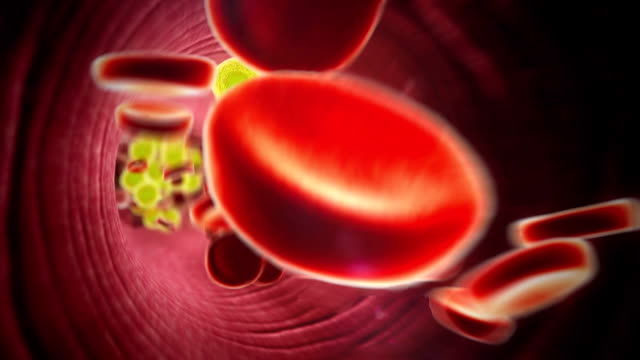cholesterol, blood vessel fat cell in the blood, inside the blood vessel,  High quality 3d render of blood cells,  cholesterol in a blood blood pressure gauge stock videos & royalty-free footage