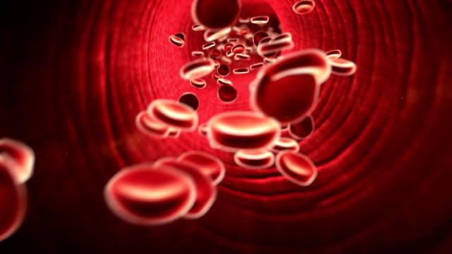 cholesterol, erythrocyte video