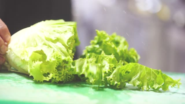 choping lettuce - slow motion - lattuga video stock e b–roll