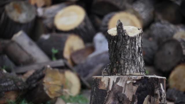 HD: Chopping wood video