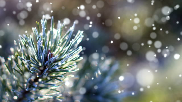 vídeos de stock e filmes b-roll de christmas card (loop 4k) - snow with glitter effect. - feriado