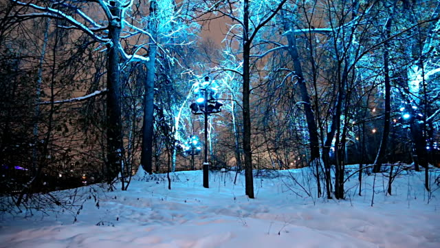 Christmas (New Year holidays) decoration in Moscow, Russia--  Sparrow Hills (Vorobyovy Gory) Christmas (New Year holidays) decoration in Moscow (at night), Russia--  Sparrow Hills (Vorobyovy Gory) russian culture stock videos & royalty-free footage