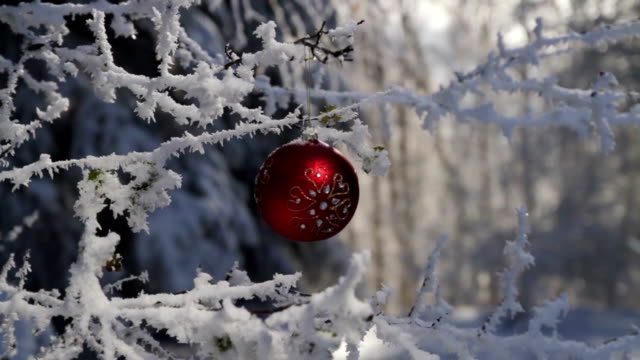 vídeos de stock, filmes e b-roll de decoração de natal feriado theme alegria mãos ao ar livre - enfeitado