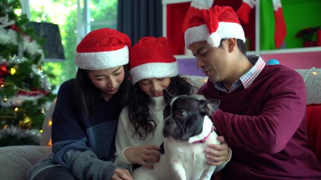 クリスマスファミリー。 - イヌ科点の映像素材/bロール