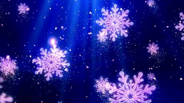 Christmas Holiday brillos 1 - vídeo