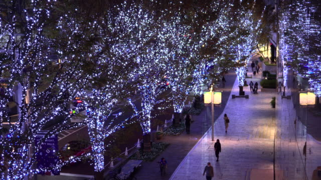 vídeos y material grabado en eventos de stock de iluminación navideña de keyakizaka - avenida