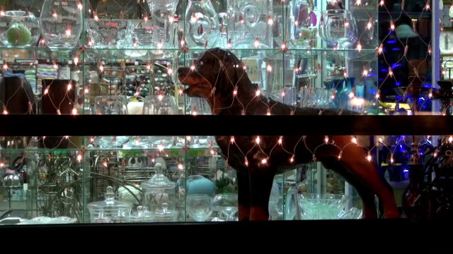 Christmas New Year shop window with light decoration and dog sculpture video
