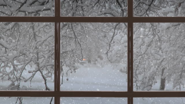 Christmas scene. Beautiful winter landscape with falling snow. 4K stock video