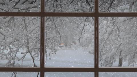 vidéos et rushes de scène de noel. beau paysage d'hiver avec la neige tombante. vidéo stock 4k - hiver