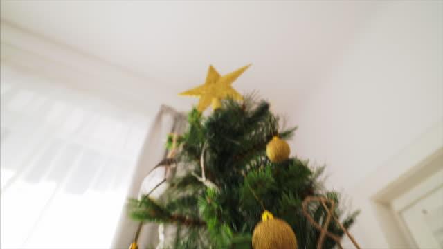 Christmas season has arrived! video